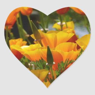 Orange California Poppies_3.1 Heart Sticker