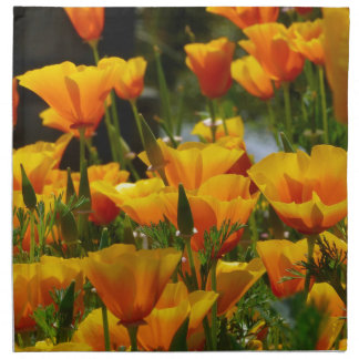 Orange California Poppies_3.1 Napkin