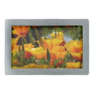 Orange California Poppies_3.1 Rectangular Belt Buckle