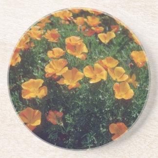 Orange California Poppy (Eschscholzia Californica) Coaster