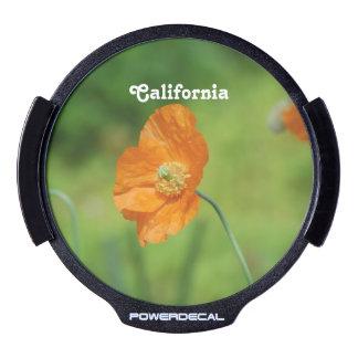 Orange California Poppy LED Auto Decal