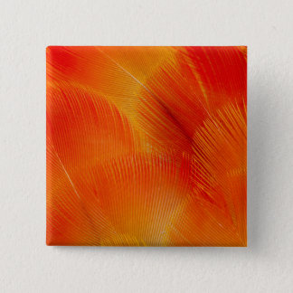 Orange Camelot Macaw Feather Abstract 2 Inch Square Button