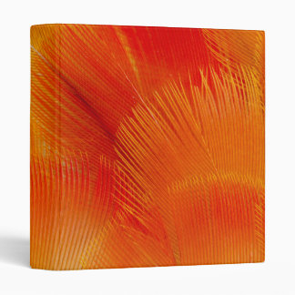 Orange Camelot Macaw Feather Abstract Binders