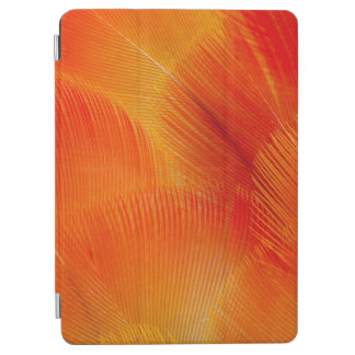 Orange Camelot Macaw Feather Abstract iPad Air Cover