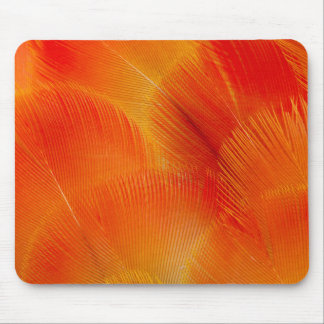 Orange Camelot Macaw Feather Abstract Mouse Pad