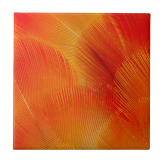 Orange Camelot Macaw Feather Abstract Tile