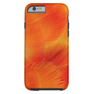 Orange Camelot Macaw Feather Abstract Tough iPhone 6 Case