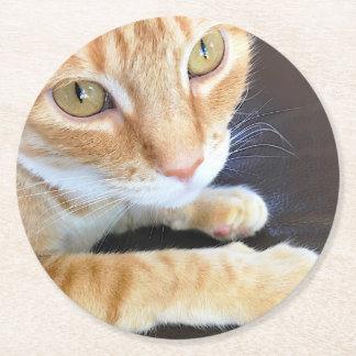 Orange cat closeup round paper coaster