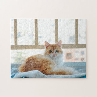 Orange cat jigsaw puzzle