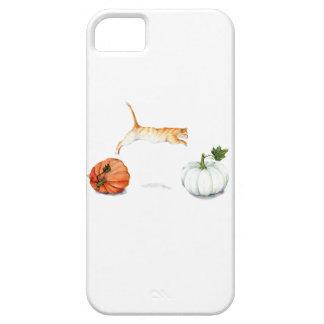 Orange Cat Jumping Between Pumpkins iPhone 5 Cases