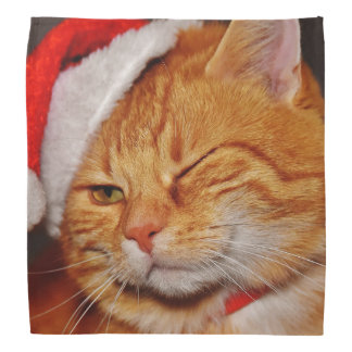 Orange cat - Santa claus cat - merry christmas Bandana