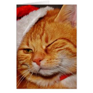 Orange cat - Santa claus cat - merry christmas Card