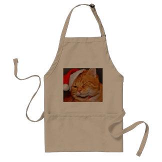 Orange cat - Santa claus cat - merry christmas Standard Apron