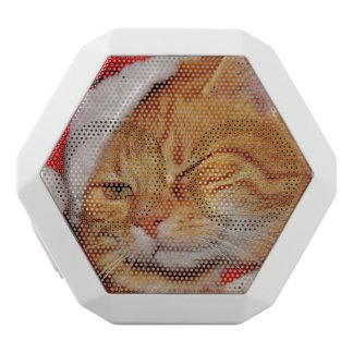 Orange cat - Santa claus cat - merry christmas White Bluetooth Speaker