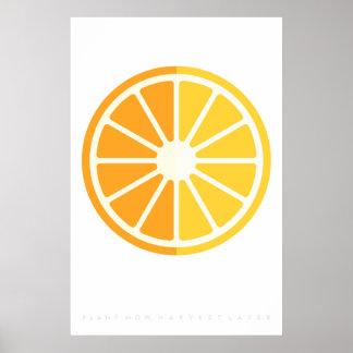 Orange Citrus Retro Fruit Poster 60's 70's Quote
