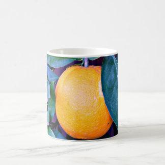 Orange Coffee Cup/Mug Coffee Mug