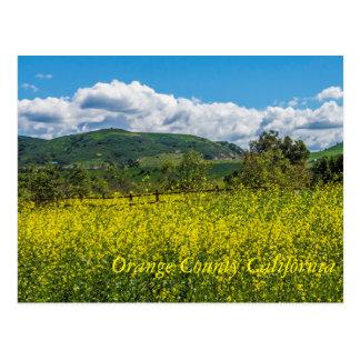 Orange County California Postcard