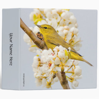 Orange-Crowned Warbler Amid the Cherry Blossoms Binder