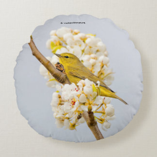 Orange-Crowned Warbler Amid the Cherry Blossoms Round Pillow