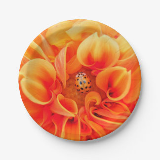 Orange Dahlia and Ladybug Paper Plate