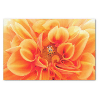 Orange Dahlia and Ladybug Tissue Paper