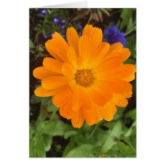 Orange Dahlia Blank Card
