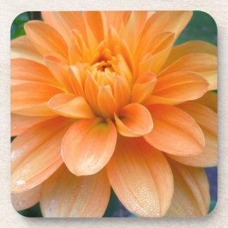 Orange Dahlia Coaster