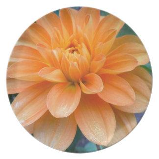 Orange Dahlia Plate