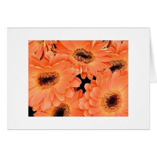 Orange Dahlias Card