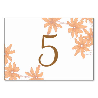 Orange Daisies on White Table Numbers Table Cards