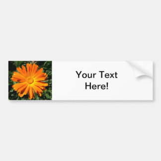 Orange Daisy design Customizable Bumper Sticker