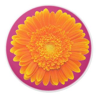 orange daisy door knob