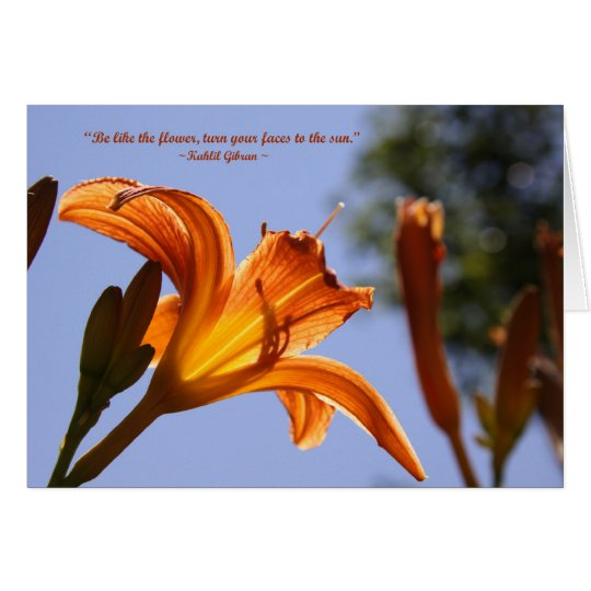Orange day lily card