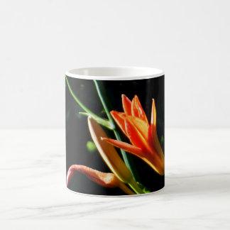 Orange Daylilies Morphing 11oz Black White Mug