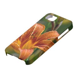 Orange Daylily & Raindrops Flower Photo iPhone 5 Cover