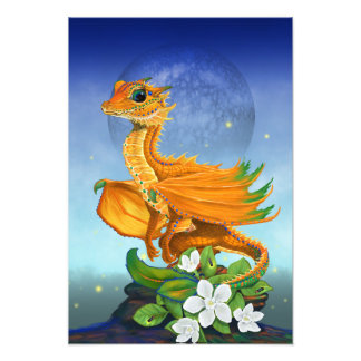 Orange Dragon 13x19 Print