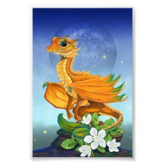 Orange Dragon 4x6 Print