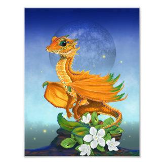 Orange Dragon 8.5x11 Print