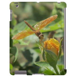 Orange Dragonfly on Yellow Rosebud