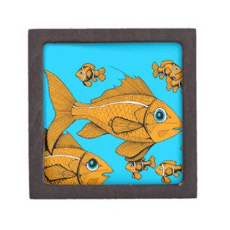 Orange Fish Premium Gift Boxes