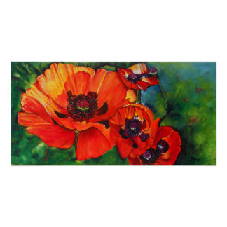 Orange Flamboyant Painted Oriental Poppies Poster