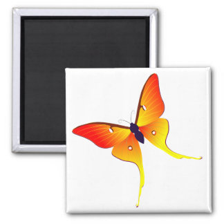 Orange Flame Butterfly Square Magnet