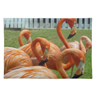 Orange flamingos placemat