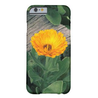 Orange Flower I-phone Case