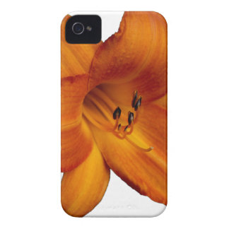 Orange Flower iPhone 4 Case