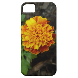 Orange Flower iPhone cover