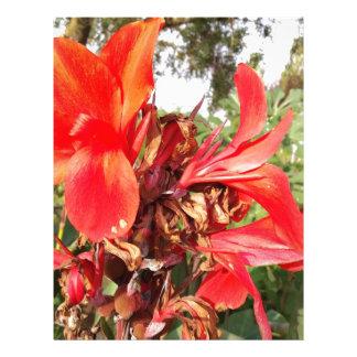 orange flower letterhead