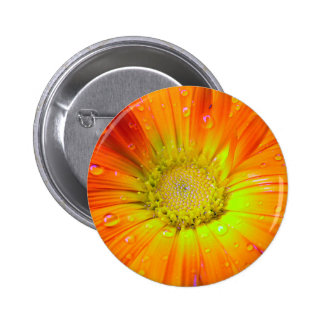 Orange flower with rain drops 2 inch round button
