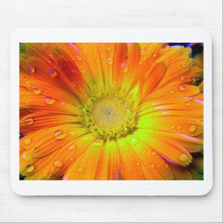 Orange flower with rain drops mouse pad