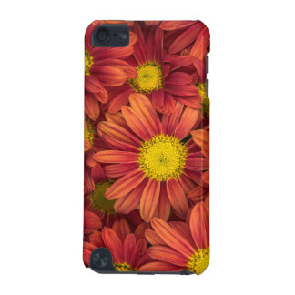 Orange Flowers iPod Touch 5G Case